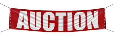 action auction outdoors